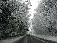 今朝の道路の様子