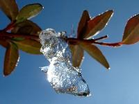 雪→氷→水